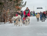 Apostle Islands Dog Sled Races 2015-7383-2