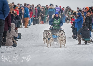 Apostle Islands Dog Sled Races 2015-7444-1