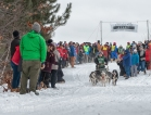 Apostle Islands Dog Sled Races 2015-7496-1