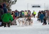 Apostle Islands Dog Sled Races 2015-7541-1
