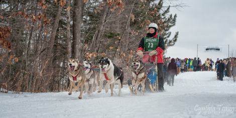 Apostle Islands Dog Sled Races 2015-7577-1