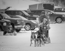 Apostle Island Sled Dog Races 2016-2202