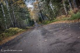 north-shore_fall-3268