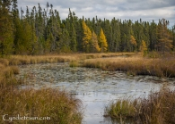 north-shore_fall-3275