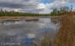 north-shore_fall-3283