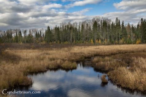 north-shore_fall-3303