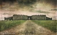 Downhill Castle-2868