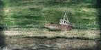 River Glen-4777