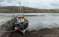 River Glen-4785