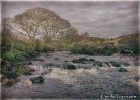 River Glen-9747