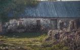 Aughnanure Castle-3244