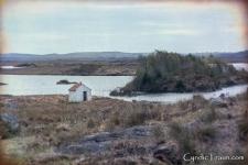 Irish Countryside-3766