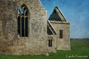 Ross Errilly Friary-3354