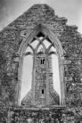Ross Errilly Friary-3357