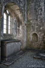 Ross Errilly Friary-3372