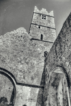 Ross Errilly Friary-3374