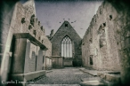 Ross Errilly Friary-3387