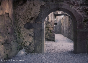 Ross Errilly Friary-3414