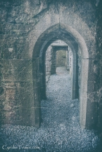 Ross Errilly Friary-3416