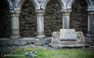 Ross Errilly Friary-3418