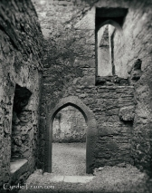 Ross Errilly Friary-3428