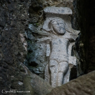 Ross Errilly Friary-3464
