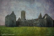 Ross Errilly Friary-3490
