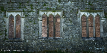 Ross Errilly Friary-3495