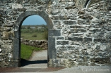 Ross Errilly Friary-3514