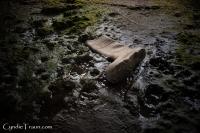 Doonbeg River-3876