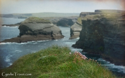 Kilkee Cliff Walk-3942