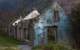 Arbutus Cottages -4174