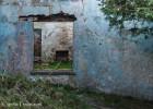 Arbutus Cottages -4187