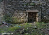 Arbutus Cottages -4215