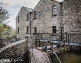 Bealick Mill-9951
