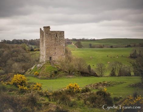 Carrigaphooca Castle-9916