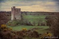 Carrigaphooca Castle-9917
