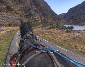Gap of Dunloe-2653