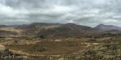 Killarney National Park-2711