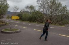 Killarney National Park Leprechauns-9895