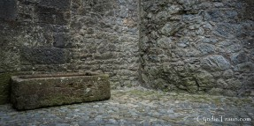 Cahir Castle-4326