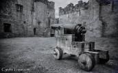 Cahir Castle-4337