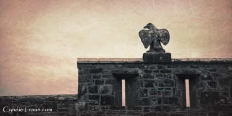 Cahir Castle-4383