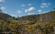 Glendalough-4583