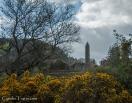 Glendalough-4650